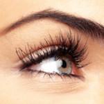 lash and brow tint